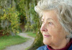 Otázky a odpovědi týkající se předčasného důchodu